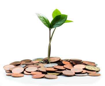 We provide cannabis business loans that get your business growing.